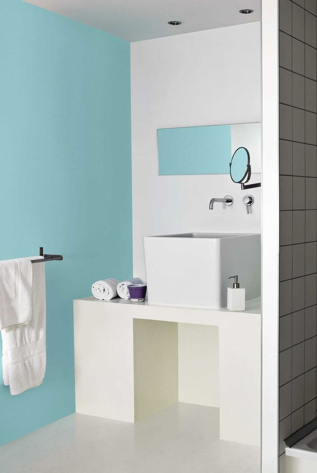 Carrelage peinture salle bain